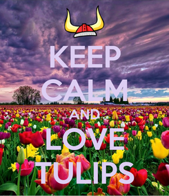 Poster: KEEP CALM AND LOVE TULIPS