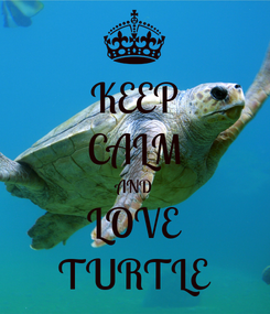 Poster: KEEP CALM AND LOVE TURTLE
