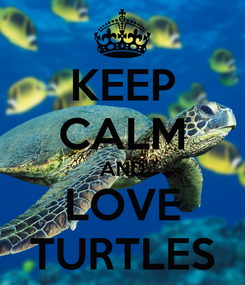 Poster: KEEP CALM AND LOVE TURTLES
