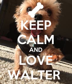 Poster: KEEP CALM AND LOVE WALTER