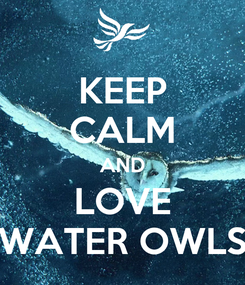 Poster: KEEP CALM AND LOVE WATER OWLS