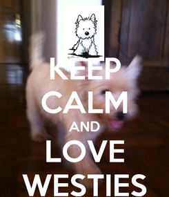 Poster: KEEP CALM AND LOVE WESTIES