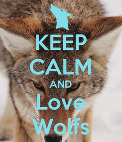 Poster: KEEP CALM AND Love Wolfs