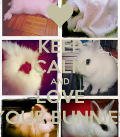 Poster: KEEP CALM AND LOVE YOUR BUNNIES