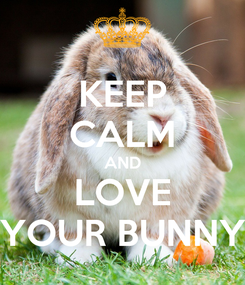 Poster: KEEP CALM AND LOVE YOUR BUNNY