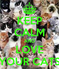 Poster: KEEP CALM AND LOVE YOUR CATS