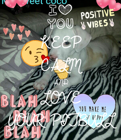 Poster: KEEP CALM AND LOVE  YOUR PITBULL