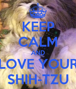 Poster: KEEP CALM AND LOVE YOUR SHIH-TZU