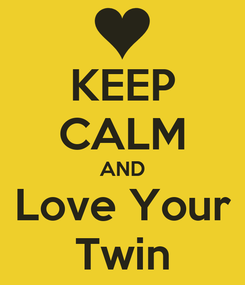 Poster: KEEP CALM AND Love Your Twin