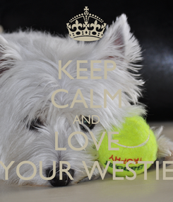 Poster: KEEP CALM AND LOVE YOUR WESTIE