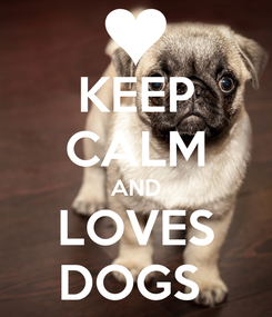 Poster: KEEP CALM AND LOVES DOGS