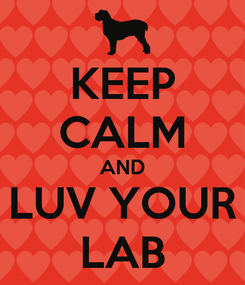 Poster: KEEP CALM AND LUV YOUR LAB