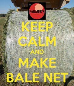 Poster: KEEP CALM AND MAKE BALE NET