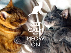 Poster: KEEP CALM AND MEOW ON