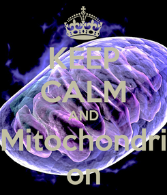 Poster: KEEP CALM AND Mitochondri on