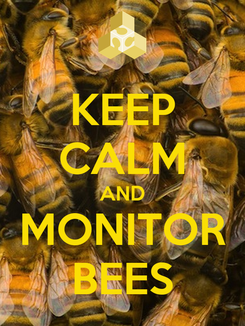 Poster: KEEP CALM AND MONITOR BEES