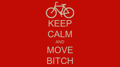 Poster: KEEP CALM AND MOVE BITCH