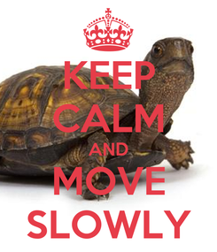 Poster: KEEP CALM AND MOVE SLOWLY