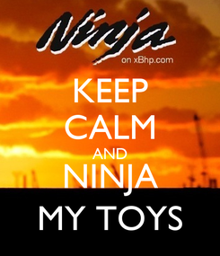 Poster: KEEP CALM AND NINJA MY TOYS