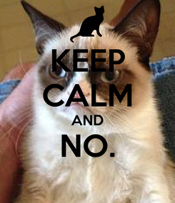 Poster: KEEP CALM AND NO.