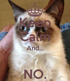 Poster: Keep Calm And...  NO.