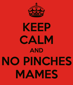 Poster: KEEP CALM AND NO PINCHES MAMES