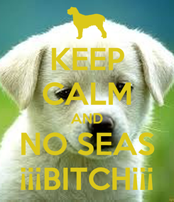 Poster: KEEP CALM AND NO SEAS ¡¡¡BITCH¡¡¡