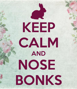 Poster: KEEP CALM AND NOSE  BONKS
