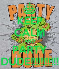 Poster: KEEP CALM AND PARTY DUDE!!!!!!!!!!!