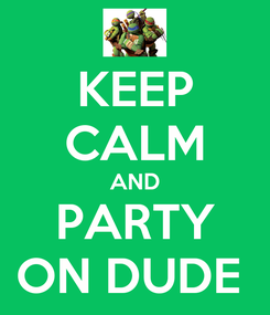 Poster: KEEP CALM AND PARTY ON DUDE