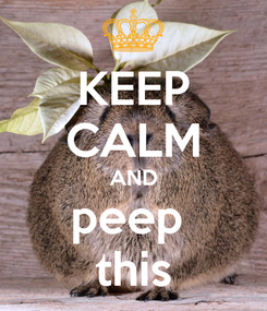Poster: KEEP CALM AND peep  this