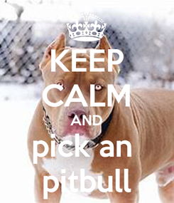 Poster: KEEP CALM AND pick an  pitbull