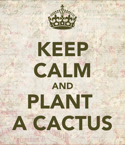 Poster: KEEP CALM AND PLANT  A CACTUS