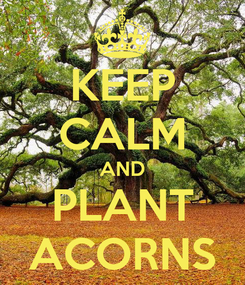 Poster: KEEP CALM AND PLANT ACORNS