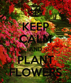 Poster: KEEP CALM AND PLANT FLOWERS