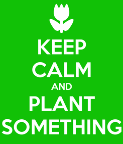 Poster: KEEP CALM AND PLANT SOMETHING