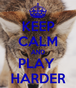 Poster: KEEP CALM AND PLAY  HARDER