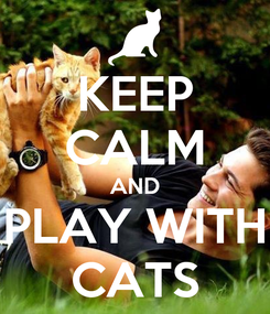 Poster: KEEP CALM AND PLAY WITH CATS