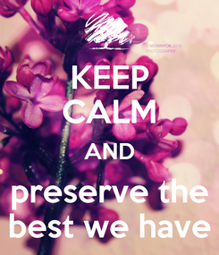 Poster: KEEP CALM AND preserve the best we have