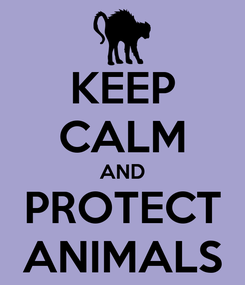 Poster: KEEP CALM AND PROTECT ANIMALS