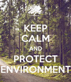Poster: KEEP CALM AND PROTECT ENVIRONMENT
