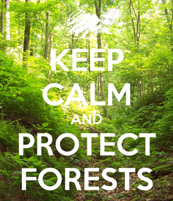 Poster: KEEP CALM AND PROTECT FORESTS