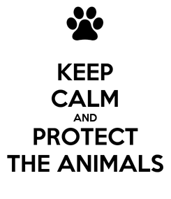 Poster: KEEP CALM AND PROTECT THE ANIMALS