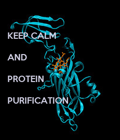 Poster: KEEP CALM  AND  PROTEIN   PURIFICATION
