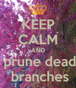 Poster: KEEP CALM AND  prune dead  branches