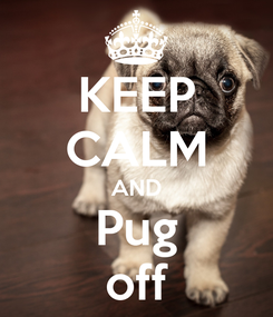 Poster: KEEP CALM AND Pug off