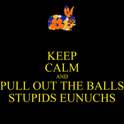 Poster: KEEP CALM AND PULL OUT THE BALLS STUPIDS EUNUCHS