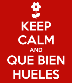 Poster: KEEP CALM AND QUE BIEN HUELES