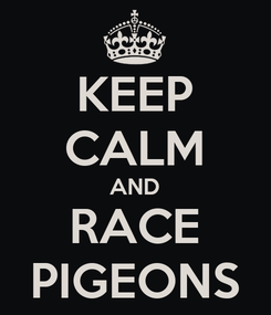 Poster: KEEP CALM AND RACE PIGEONS