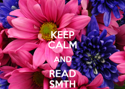 Poster: KEEP CALM AND READ SMTH